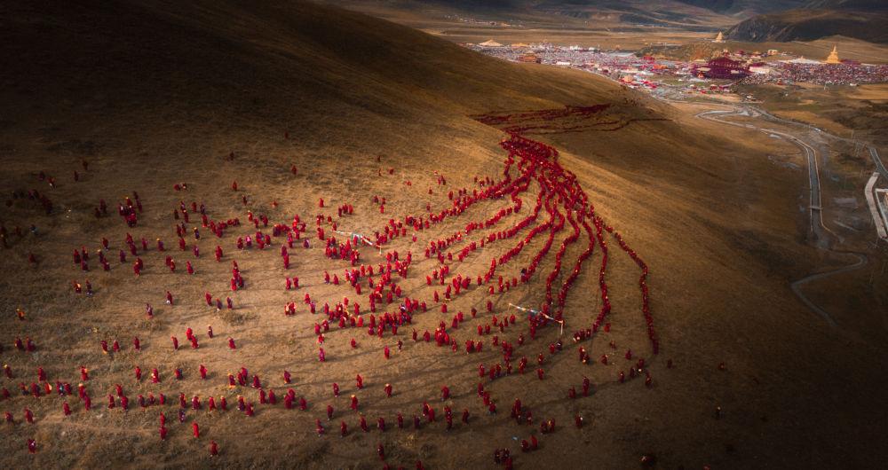 2019 Sony Dünya Fotoğraf Ödülleri Kısa Listesine kalanlar