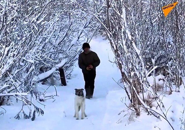 -40 derecelik ormanda yalnız geçen bir ömür