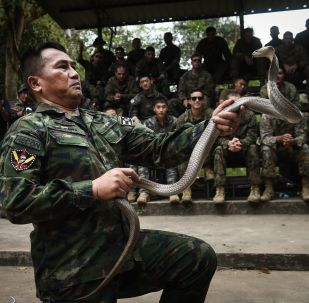 Tayland'da 'Cobra Gold' tatbikatı