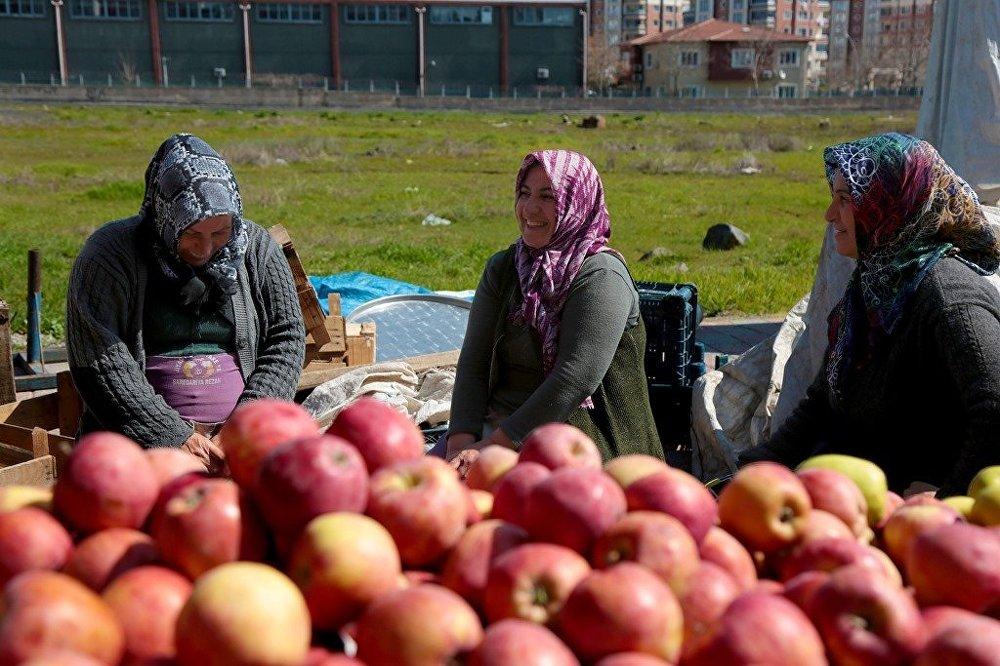Diyarbakır'da, Türkiye'nin ilk kadın semt pazarı olma özelliği taşıyan Jiyan Semt Pazarı - kadın - pazar  - elma