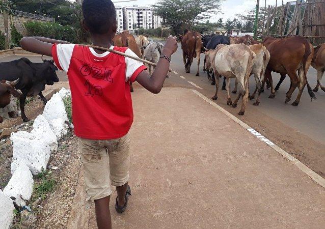 Özil'den formasını giyen Kenyalı çocuğa özel hediye