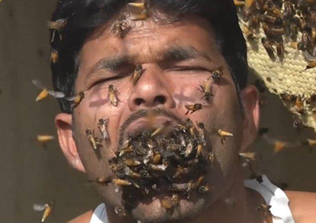 Hindistan'ın Batı Bengal eyaletinde yaşayan bal toplayıcısı Suk Mahammad Dalal'in ağzını canlı arılarla doldurduğu belirtildi.