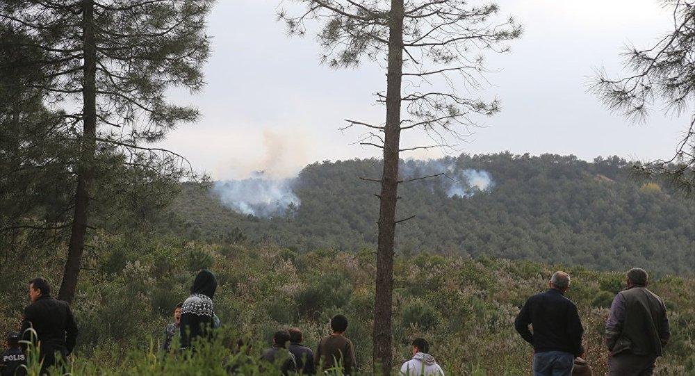 Sultanbeyli Aydos Ormanı'nda çıkan yangına orman ekipleri ile itfaiye ekipleri müdahale ediyor.