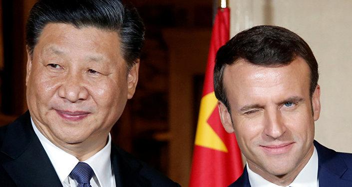 Şi Cinping ile Emmanuel Macron