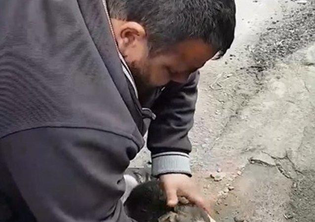 Rize'nin Kendirli Beldesi'nde yaşayan esnaf Ömer Yılmaz, aniden fenalaşan yavru köpeği suni teneffüs ve kalp masajıyla kurtardı.