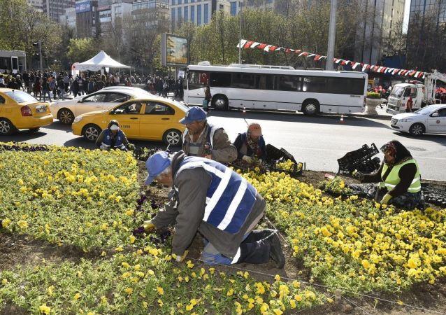 Ankara'da yeşil alan bakım ihalesi ilk kez internetten canlı yayınlanacak