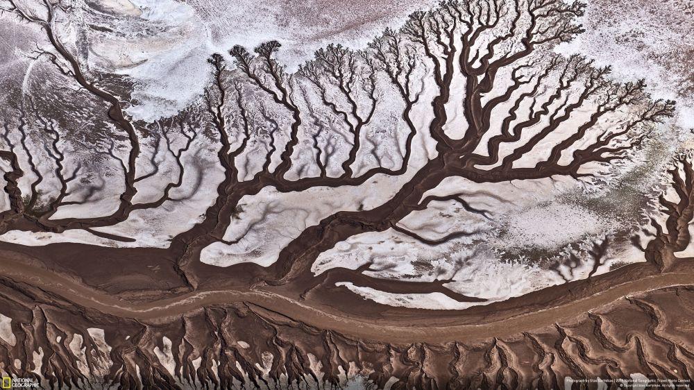 Doğa kategorisinde Halkın Seçimi Ödülünü alan Stas Bartnikas'ın çektiği etkileyici Colorado Nehri manzarası.