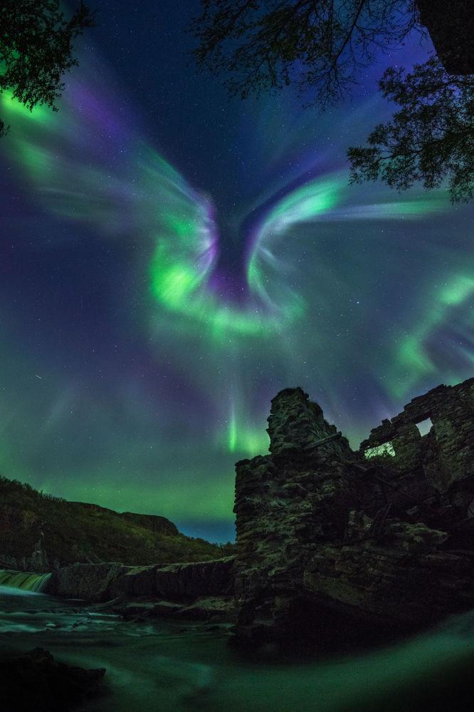 Yarışmanın kısa listesine giren Rus fotoğrafçı Alexander Stepanenko'nun fotoğrafı,  kutup ışıklarının sık sık görüldüğü Rusya'nın Murmansk kentinde çekildi.