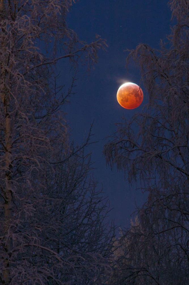 2019 Yılının Astronomi Fotoğrafçısı Yarışması'nın finaline kalanlardan Finlandiyalı fotoğrafçı Keijo Laitala'nın kanlı Ay görüntüsü.