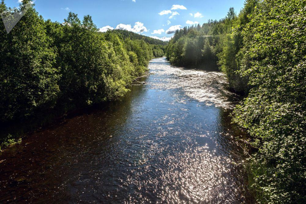 Karelya Cumhuriyeti'ndeki Kumsa Nehri.