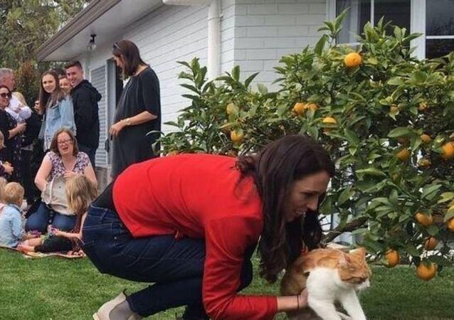 Yeni Zelanda Başbakanı Jacinda Ardern bahçede kedisi Paddles ile