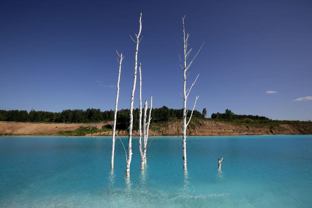 Zehirli buharlar, kurumuş bitkiler ve mavi martılardan ötürü bölgeyi 'ölüm gölü' olarak nitelendirenler de mevcut. Öyle ki HBO'nun Çernobil dizisinin etkisinde kalan kimi ziyaretçiler, durumu 1986 yılında Sovyetler Birliği'nde yaşanan faciayla da karşılaştırıyor.