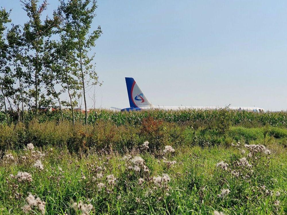 Simferopol'e gitmek üzere Moskova'dan havalanan Ural Havayolları uçağının iniş yaptığı mısır tarlası, Jukovskiy Uluslararası Havaalanı'nın 1 kilometre uzağındaki Ramensk bölgesinde bulunuyor.