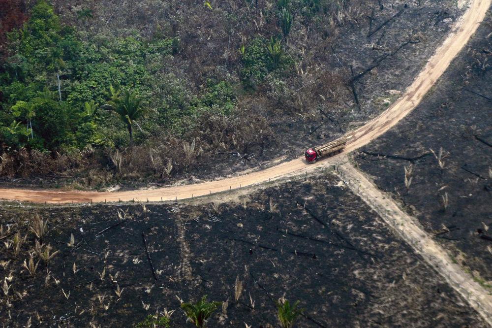 Amazonlarda yanan ormana kuşbakışı