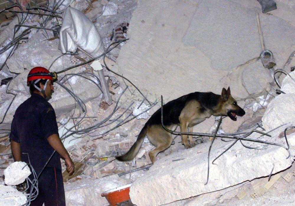 Atina depremi sonucu çökmüş dört katlı apartmanın enkazlarında  mahsur kalanları arama çalışmaları.