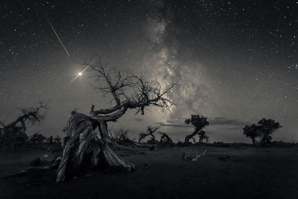 Yarışmanın Gökyüzü Manzaraları kategorisinde birinci seçilen Çinli fotoğrafçı Wang Zheng'in görüntüsü, Moğolistan'ın Ejina bölgesinde çekildi.