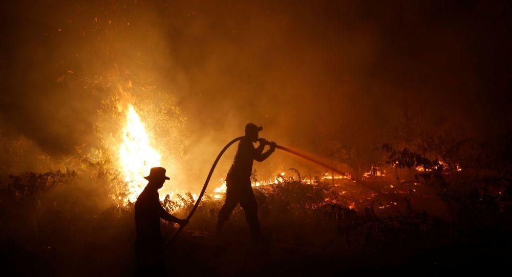 Endonezya'da orman yangınları