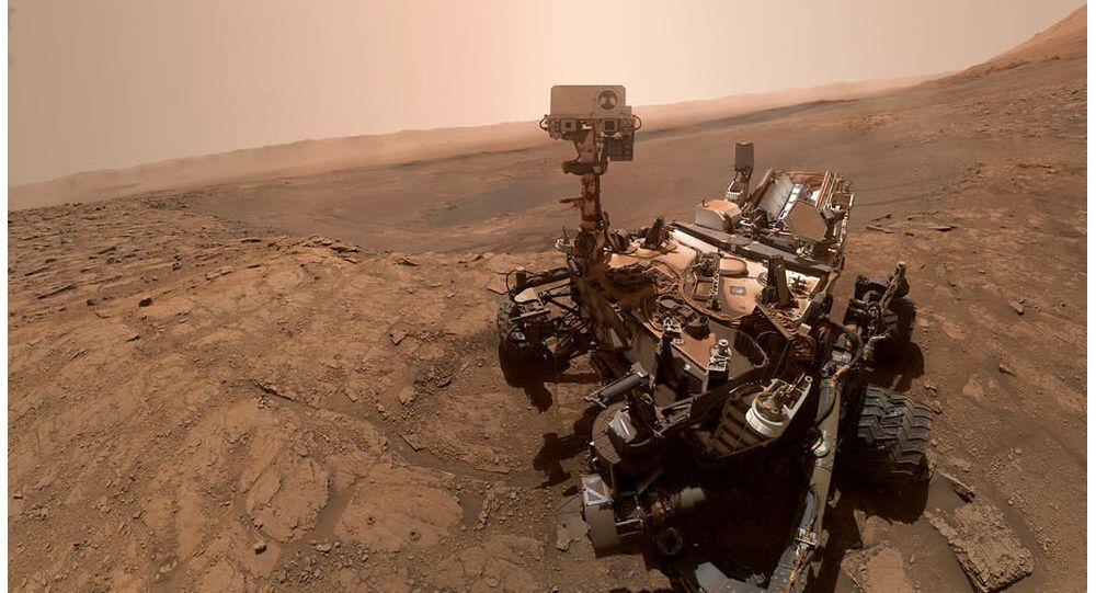 Üniversite, Mars'ta Hayat Bulunduğunu İddia Eden Araştırmacısının Basın Bültenini Sildi…