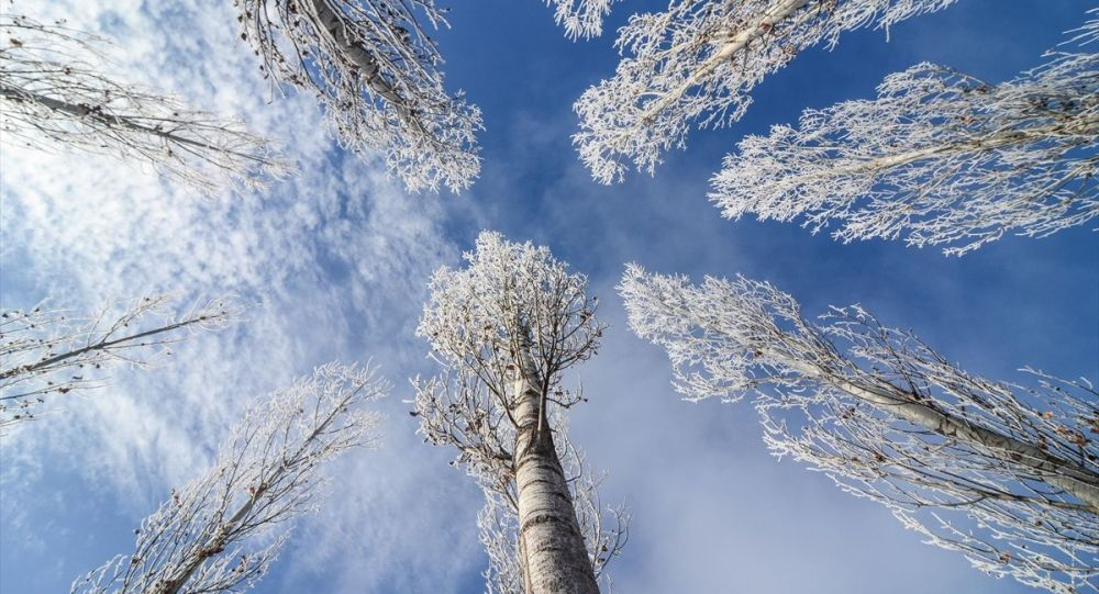 Tunceli'nin Ovacık ilçesinde, kar yağışının ardından etkili olan soğuk hava hayatı olumsuz etkiliyor.