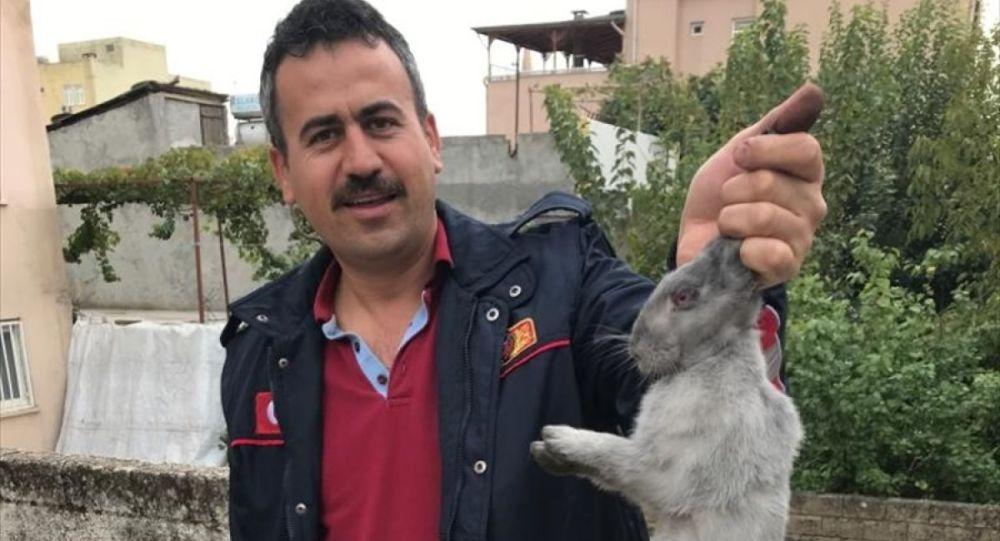 Adıyaman'da bir evin bacasına düşen tavşanı itfaiye ekipleri kurtardı. Olay yerine gelen itfaiye ekipleri, tavşanı özel kurtarma aparatı ile bulunduğu yerden çıkardı.