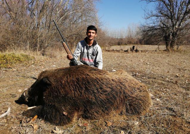 1 ay takip etti, 300 kiloluk yaban domuzunu vurdu