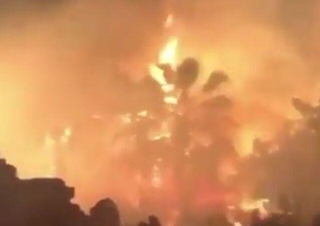 İzmir'in Konak ilçesinde otluk alanda çıkan yangın paniğe sebep olurken, alevler itfaiye ekipleri tarafından kısa sürede söndürüldü.