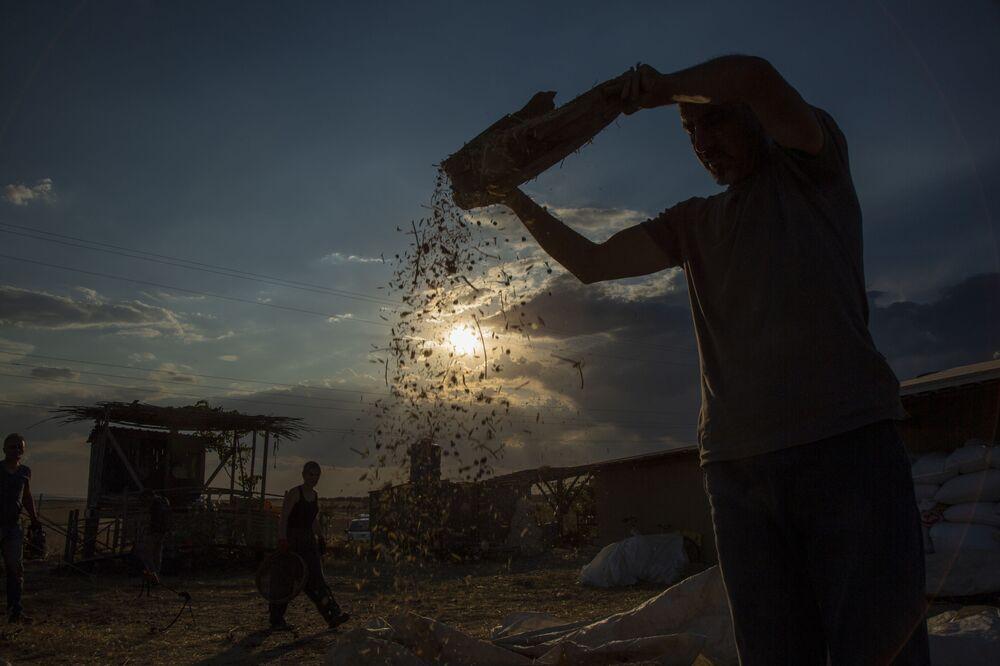 """Yerel tohumu kullanma oranının çok düşük olduğunu belirten Kanay """"Şirketler iktidarları manipüle ederek tohum yasaları çıkarıp yerel tohumları yasakladılar. Ekimini ya da başkasına satışını yasakladılar. Gittikçe bu cendere kısıldı kısıldı ve yerel tohumların cazibesi kayboldu. Çiftçiye destek veriyor ama 'sertifikalı tohum' kullanacaksın diyor. Oysa tam tersi, 'eski tohum, doğal tohum senin coğrafyanda binyıllarca yetiştirdiğin tohumu üretirsen ben sana destek veririm' demesi lazımken hibrit tohumunu kullanmanın önünü açıyor, ona destek veriyor. Diyarbakır kapuzla anılır ama şu anda şirketlerin tohumunun fiyatı kilosu 5 milyar ve her yıl artıyor ama verimi iyi, niye iyi, ilaçla, gübreyle iyi verim alınıyor ama hastalıklara hassas, bu sefer de ilaç kullanıyor. Artık yerel eski tohumu kaybettiği için, tekniğini de kaybettiği için hemen çok çabuk para kazanacağım diye çok ürün veren tohum kullanıyor"""" dedi."""