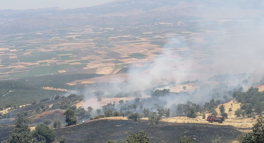 Gaziantep Nurdağı'nda makilik alanda yangın