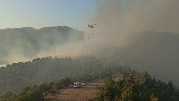 İzmir'de orman yangını - Sputnik Türkiye