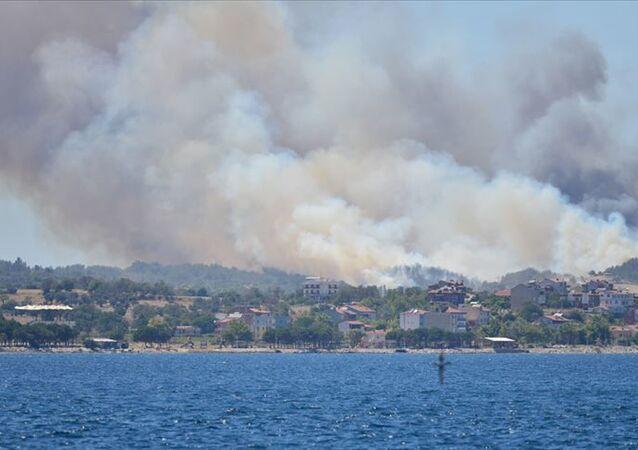 Çanakkale'nin Eceabat ilçesinde çıkan orman yangınına müdahale ediliyor.