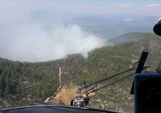Burdur'un Bucak ilçesinde çıkan orman yangınına müdahale ediliyor.