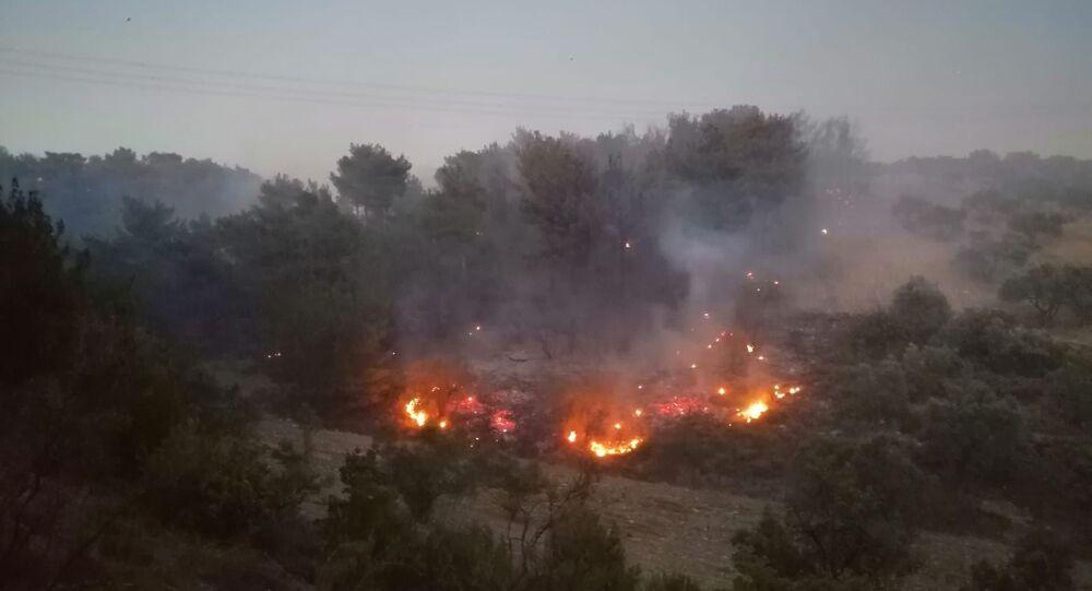Manisa'nın Soma ilçesinde ormanlık alanda yangın çıktı