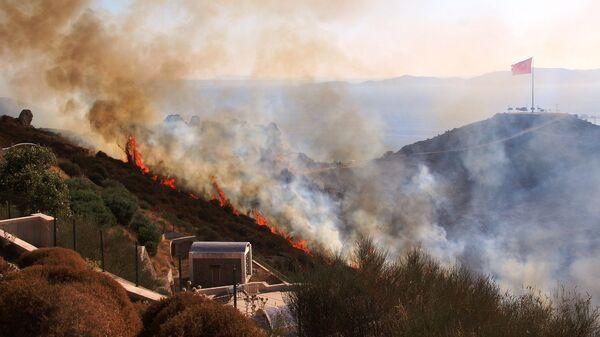 Bodrum, orman yangını - Sputnik Türkiye