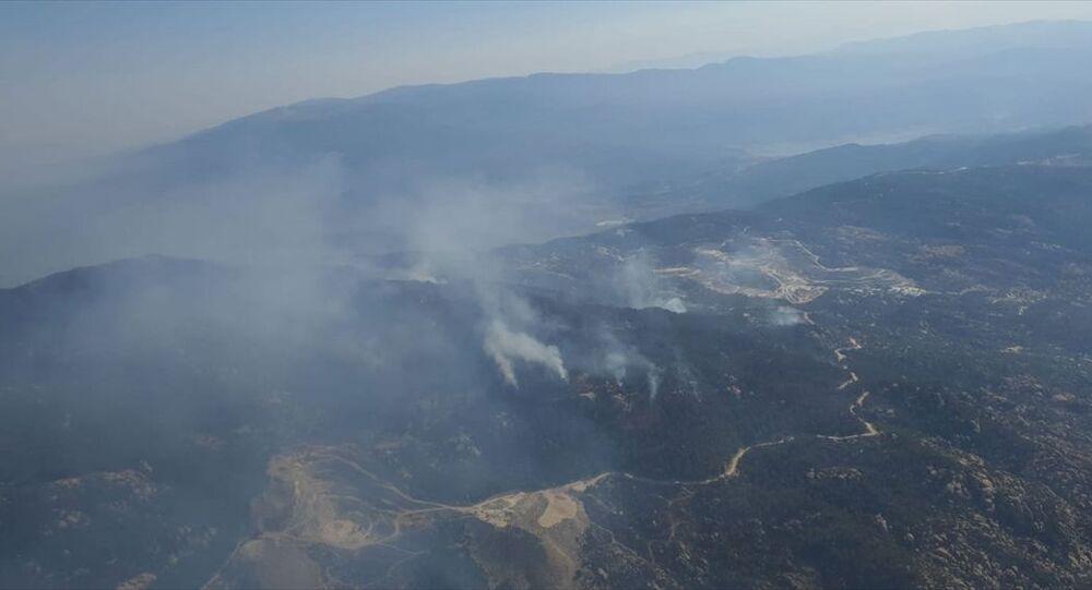 Aydın'ın Çine ilçesinde çıkan ve Muğla'nın Yatağan ilçesine kadar ulaşan orman yangını