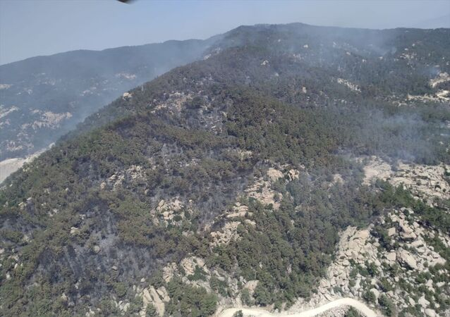 Aydın'ın Çine ilçesinde çıkan ve Muğla'nın Yatağan ilçesine kadar ulaşan orman yangını kontrol altına alındı.