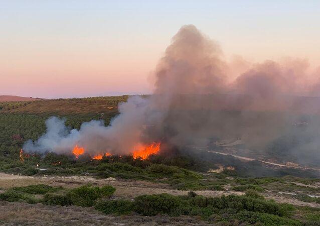 Bozcaada'da makilik alanda yangın çıkan yangına müdahale ediliyor