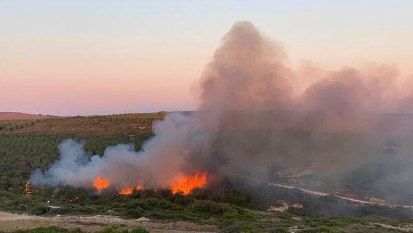 Bozcaada'da makilik alanda yangın  - Sputnik Türkiye