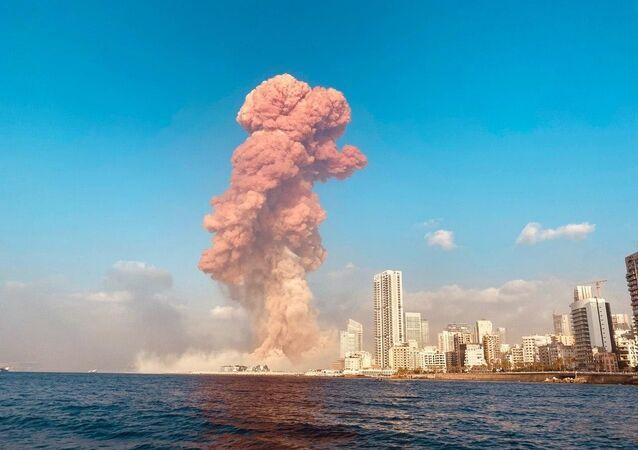 Patlamada büyük ölçüde tahrip olan BL, başkentin kuzeyinde Akdeniz kıyısında bulunuyor. Lübnan Dağları'nın eteklerinde yer alan liman, Doğu Akdeniz'in en büyük ve en işlek limanlarından biri olarak Lübnan ekonomisinde önemli bir role sahip.