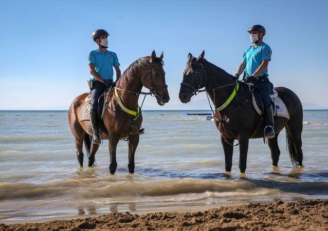 Göl kenarındaki sazlıklarda yaban hayatını korumak için de çalışmalarını sürdüren atlı jandarma birliğine vatandaşlar da yoğun ilgi gösteriyor.
