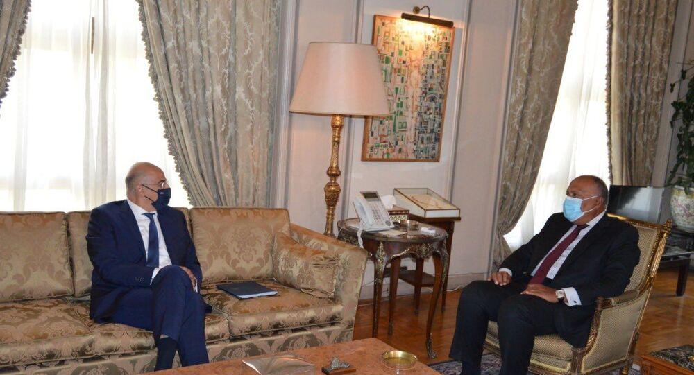 Yunanistan Dışişleri Bakanı Dendias - Mısır Dışişleri BakanıSameh Şükrü