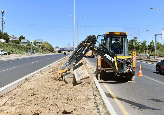 Ankara'da ağaçların kurumasıyla ilgili açıklama geldi: Sebebi sulamamak değil altına atılmış beton