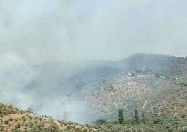 Muğla'nın Milas ilçesine bağlı Selimiye köyündeki zeytinlik alanda yangın çıktı. Rüzgarında etkisiyle ormanlık alana sıçrayan yangına, müdahaleler sürüyor.