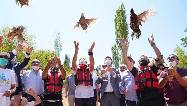 Tokat'ın Erbaa ilçesinde kene ile mücadele kapsamında bin keklik ve sülün doğaya bırakıldı. Erbaa Belediyesi tarafından 2008 yılında kurulan Sülün ve Keklik İstasyonunda yetiştirilen keklik ve sülünler, Boğazkesen mevkisinde düzenlenen programla doğaya salındı. - Sputnik Türkiye