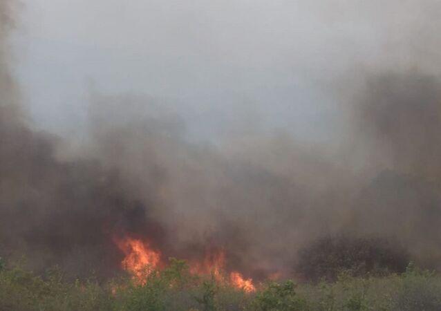 Bulgaristan sınırında çıkan orman yangını 2 gündür söndürülemezken, alevlerin Türkiye'ye sıçramasına 5 metre kaldı.