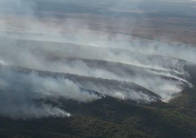 Bulgaristan-Türkiye sınırındaki yangın kontrol altına alındı