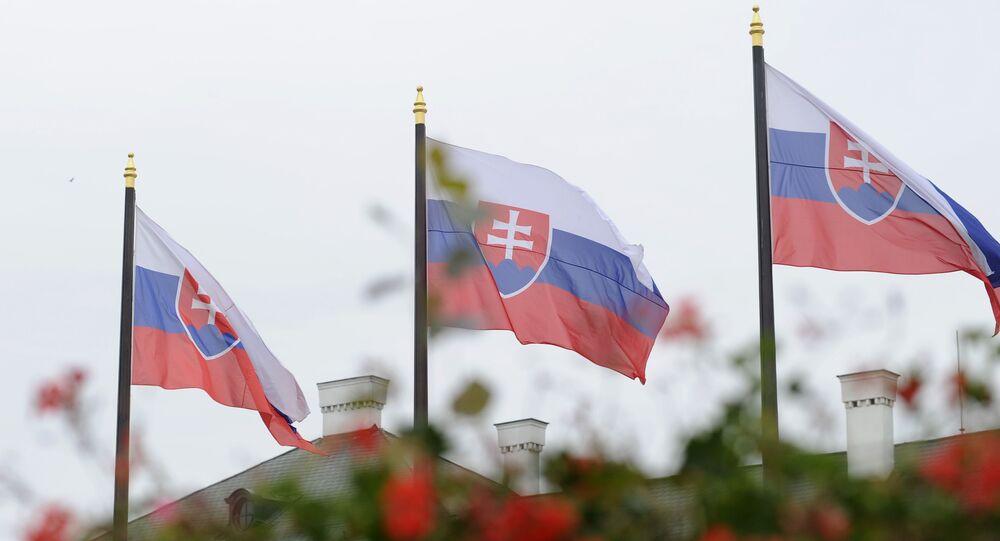 Slovakya - bayrak