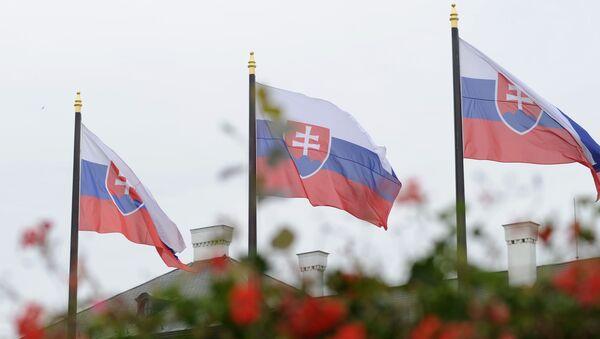 Slovakya - bayrak - Sputnik Türkiye