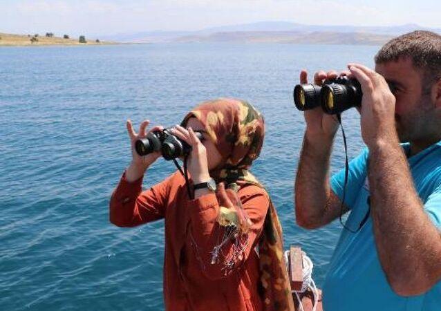 Van Gölü'nde cep telefonu kamerası görüntülerine yansıyan sırtı zikzaklı, hızlı hareket eden yaklaşık 15 metrelik cisim, gölde balıkçılık yapanların da dikkatini çekti. Balıkçılar, cep telefonu kamerasıyla görüntüleri çeken Züleyha Sona'yı da yanlarına alarak görüntülerin çekildiği bölgede dürbünle var olduğu iddia edilen canavarı aradı.