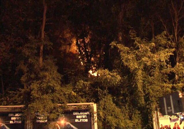 Sarıyer Emirgan Korusu'nda henüz bilinmeyen bir nedenle yangın çıktı. Yangın itfaiye ekiplerince kısa sürede söndürüldü.