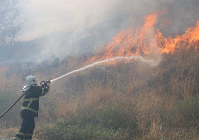 Söke ilçesinde, tarım arazisinde yakılan anız ateşi nedeniyle yangın çıktı. Yangın Priene Antik Kenti kalıntılarına 3 kilometre mesafede etkili olurken, yangına havadan ve karadan müdahale ediliyor.